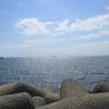 大阪府の港や海の写真