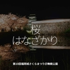 465食目「桜 はなざかり」第10回 福岡城さくらまつり@舞鶴公園