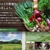 安心安全・美味しいお野菜あるよ〜 坂ノ途中に共感して今日から本格的に定期的に取り扱い開始!