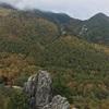 小川山でマルチ!
