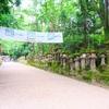 【週末奈良旅】朱塗の社殿に金色の釣灯篭が映える奈良の世界遺産『春日大社』(その三)