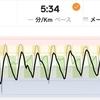 ジョギング6.32km・早朝ラン始めは坂ダッシュから!&12月と2016年のまとめ