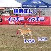 NDA 風の御前崎 3日目 - 1