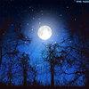 さそり座満月の女神からのメッセージ