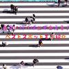 【芸能人遭遇情報】東京に行けば必ず会える!ベストスポットをご紹介☆