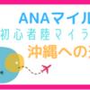ANAマイル✈️初心者陸マイラー・沖縄への道!