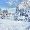 冬キャンプに行こう!冬キャンプの魅力と注意点