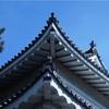 福井県というところ4   歴史の続きです。江戸時代が始まった