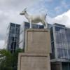 ロンドン散歩:スピタルフィールズのヤギ
