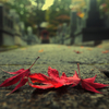『秋の日』萩原朔太郎