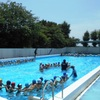 1年生 水泳