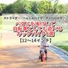 【3歳~4歳キックバイク比較8選!】ペダルを付けて自転車になる☆多機能なバランスバイクまとめて紹介します。