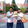 祝☆5刷り一万部突破!「桜島! まるごと絵本」 プレゼントキャンペーン