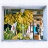 【バナナジュース効果】バナナの魅力を徹底解説!朝バナナ食べるべき理由も紹介!【9つの効果】