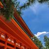 東大日本史対策におすすめの参考書・問題集|東大宅浪みおりんが厳選!