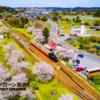 【小湊鉄道】桜 4K Drone Japan 空撮ドローン Cherry Blossom ドローン男子