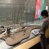 群馬県立自然史博物館でトランドーシャン