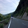 新城市の四谷千枚田と設楽町の山