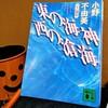 『東の海神 西の滄海』の感想を好き勝手に語る【小野不由美】