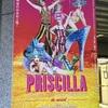 ミュージカル「プリシラ」感想