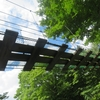 No:065【宮城県】まさに仙台の秘境!!奥新川駅に行く途中で渓流を発見したので遊んだ!