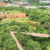 【バンコク週末トリップ】自然と触れ合う休日「MetroForest-都会の森(パーナイクルン)」