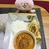 1週間ぶりのスグボメルカド(Sugbo Mercado)でインドカレーを食べてみた(*^▽^*)