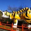 虎と聖徳太子と松永久秀と… 奈良・朝護孫子寺