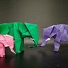 おりがみ:ゾウ (Origami : Elephant)
