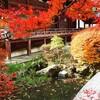 京都好きにおすすめの「京都手帖」