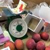 宮古島+多良間島 3 Days - マンゴ農園でマンゴを買う。