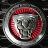 自動車ボディコーティング#98 ジャガー/F-PACE メッキ硫黄錆除去+ボディ研磨+樹脂硬化型コーティング【Ω/OMEGA】+ホイールコーティング