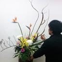 京都伏見 「花いずも」