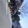 東海道の丁子屋
