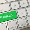 【PFF】(iシェアーズ 優先株式 & インカム証券 ETF)配当利回り最高水準の米国高配当ETF