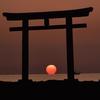 ⛩磯前神社 神磯の鳥居に撮影遠征してきました!