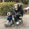 【茨城県/日立市】犬OK!🐶北茨城一のレジャーランド『かみね公園』