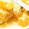 【巣蜜の蜜蝋を難なく食べられる方法】朝食で巣蜜が食べられるホテルの紹介