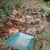 伐木を回収 こちらも一杯に Collecting logs