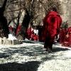 チベットについて今できることってなに?4つの支援団体による提案
