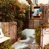 【中津】隠れ家カフェでカレー☆カンテグランデ