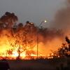 オーストラリアの山火事(bushfires)事情