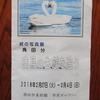 ◆『角田 分  終の写真展~白鳥の生態を追う』