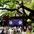 【東京】東京大神宮で復縁を成功させるために行うこと
