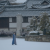 麗 〜花萌ゆる8人の皇子たち〜 / 月の恋人 - 歩歩驚心:麗 (ネタバレあり感想)