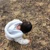 青空自主保育・木もれ陽の会 体験
