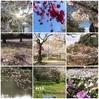 平成から令和  練習ログ 4/23-4/30