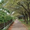 荒子川公園 2020.9.23