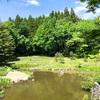 【石川】白山さん近くにある「樹木公園」はおすすめ散策スポット