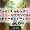 【家庭菜園】じゃがいもがピンチ!?テントウムシダマシに見事に騙されたので対策していきます!